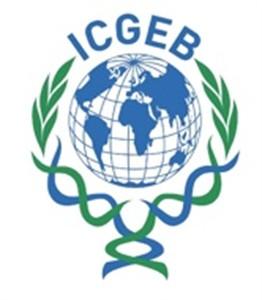 Centar za genetski inženjering i biotehnologiju ICGEB nudi postdoktorske stipendije i istraživačke grantove