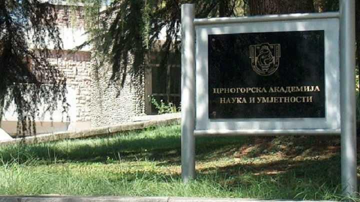 Profesorima i saradnicima Univerziteta Crne Gore dodijeljene CANU povelje i nagrade