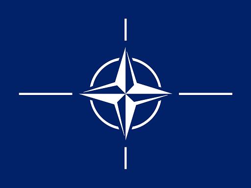 Predavanje gđe Monike Hankijevič-Klotopek, šefice odsjeka NATO-a za regrutovanje u Crnoj Gori, o mogućnostima zaposljavanja pri NATO-u
