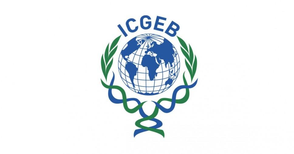 ICGEB i UNOSSC  objavili novi program stipendiranja