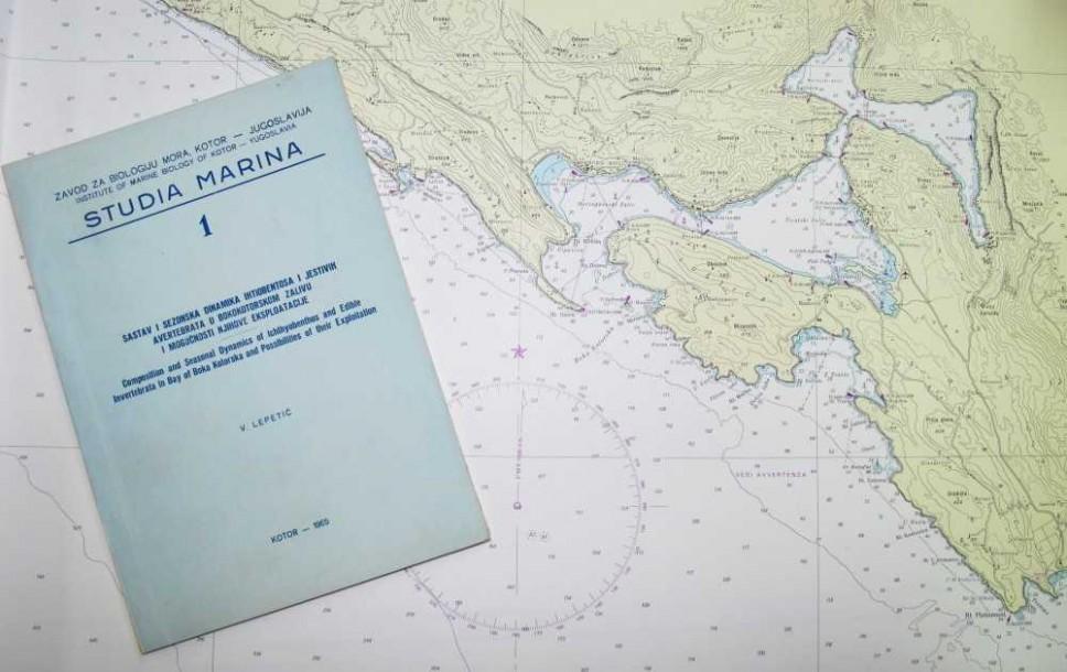 Studia Marina Vol. 1 No. 1 (1965.)